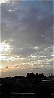 pic001.jpg